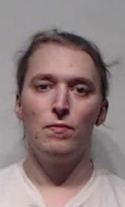 Ryan Chase Bronson a registered Sexual Offender or Predator of Florida