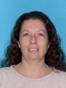 Susan Leannn Williamson a registered Sexual Offender or Predator of Florida