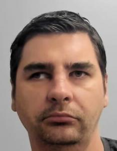 Dan Ionescu a registered Sexual Offender or Predator of Florida