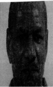 Nathaniel Williams a registered Sex Offender of Virginia