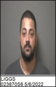 Vincent W Liggs a registered Sex Offender of North Carolina