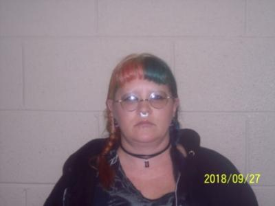 Bobbie Michelle Hopkins a registered Sex Offender of Tennessee