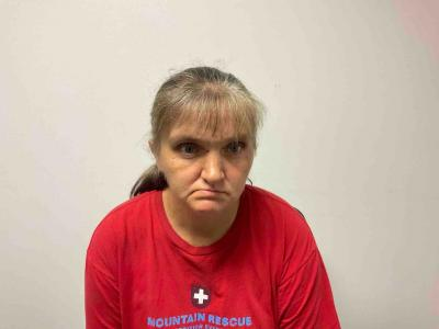 Mary Ann Butler a registered Sex Offender of Tennessee