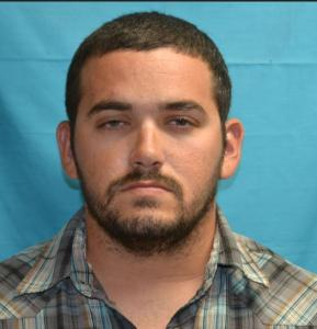 Brandon Harvy Francis a registered Sex Offender of Tennessee