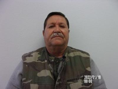 Domingo Salines a registered Sex Offender of Texas