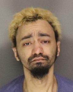 Christopher Simono a registered Sex Offender of New York