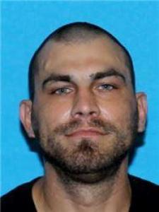 David Paul Pittman a registered Sex Offender of Alabama