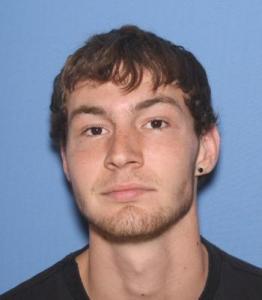 Allen Daniel Hodgson a registered Sex Offender of Arkansas