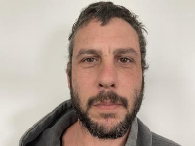Michael Steven Hasik a registered Sex or Violent Offender of Indiana