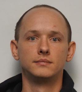 Aleksandrs Mikelis Vitolins a registered Sex or Violent Offender of Indiana